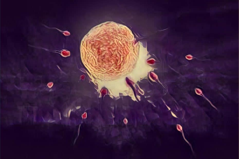 Injeção intracitoplasmática de espematozoide