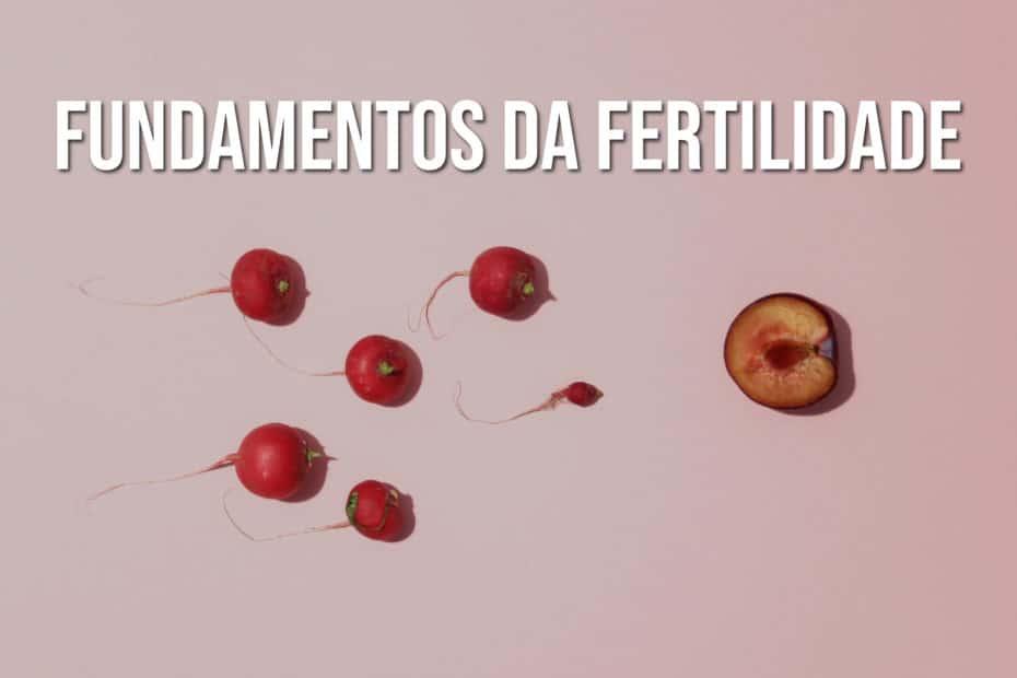 Fundamentos da fertilidade